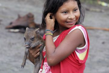 Yanomami-Mädchen mit Wildschwein-Frischling