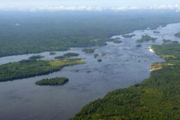 Amazonas-Flusslandschaft