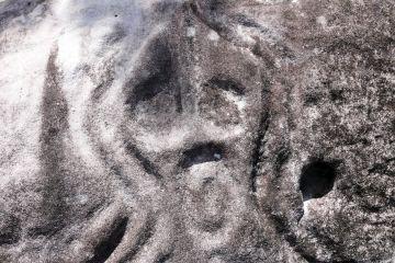 Der Schrei – Die mysteriöse Felsgravuren von Novo Airão