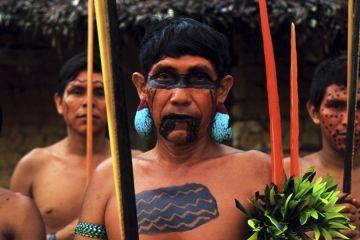 Yanomami-Indios mit Kriegsbemalung