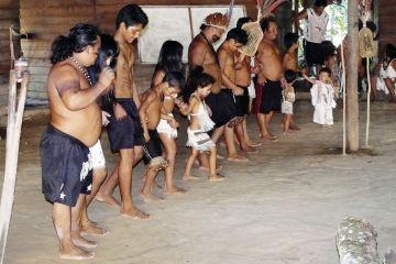 Dorfgemeinschaft der Sateré-Mawé