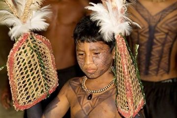 Ein Sateré-Mawé-Junge wird auf Inauguration-Ritus vorbereitet